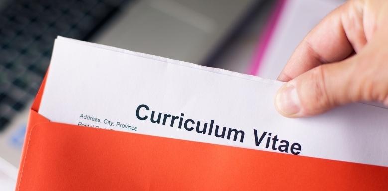 Curriculum Vitae - Darstellung