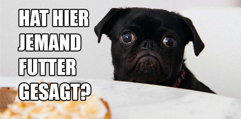 Pawlowscher Hund Meme