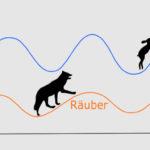 Die Lotka Volterra Regeln zeigen die Abhängigkeit von Räubern und Beute