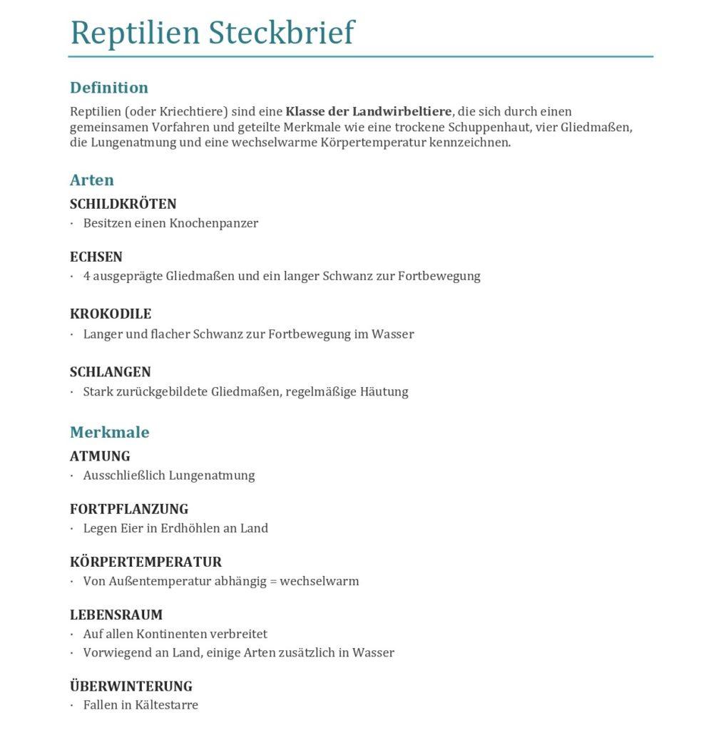 Reptilien Steckbrief