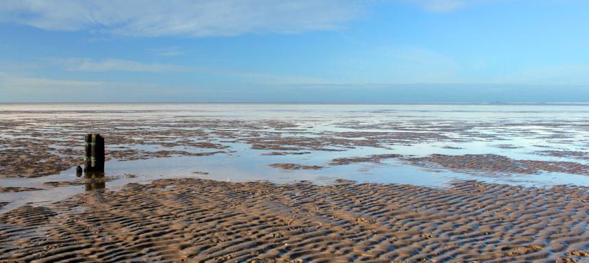 Biotop Wattenmeer
