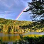 Biotop See, Wald und Regenbogen