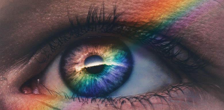 Auge Aufbau Titelbild