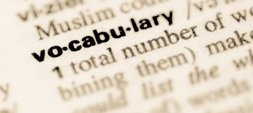 Vokabeln im Wörterbuch